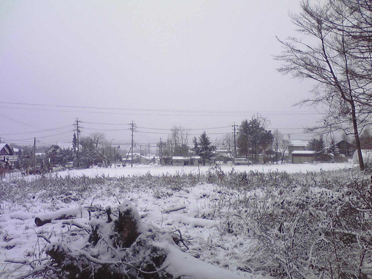 今日の午後の軽井沢【雪】