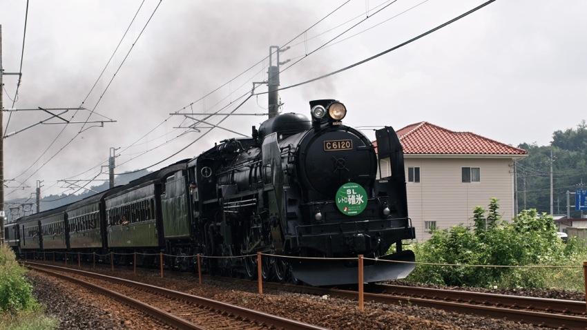 T1017004