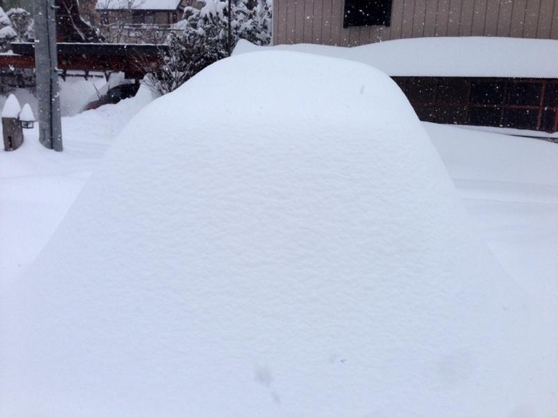 観測史上初の大雪。