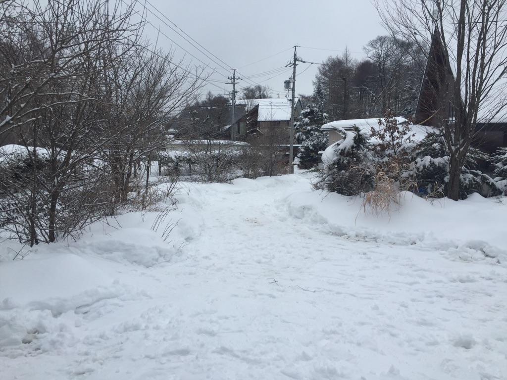 雪かきは続く。