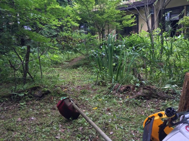 梅雨の合間の草刈り。
