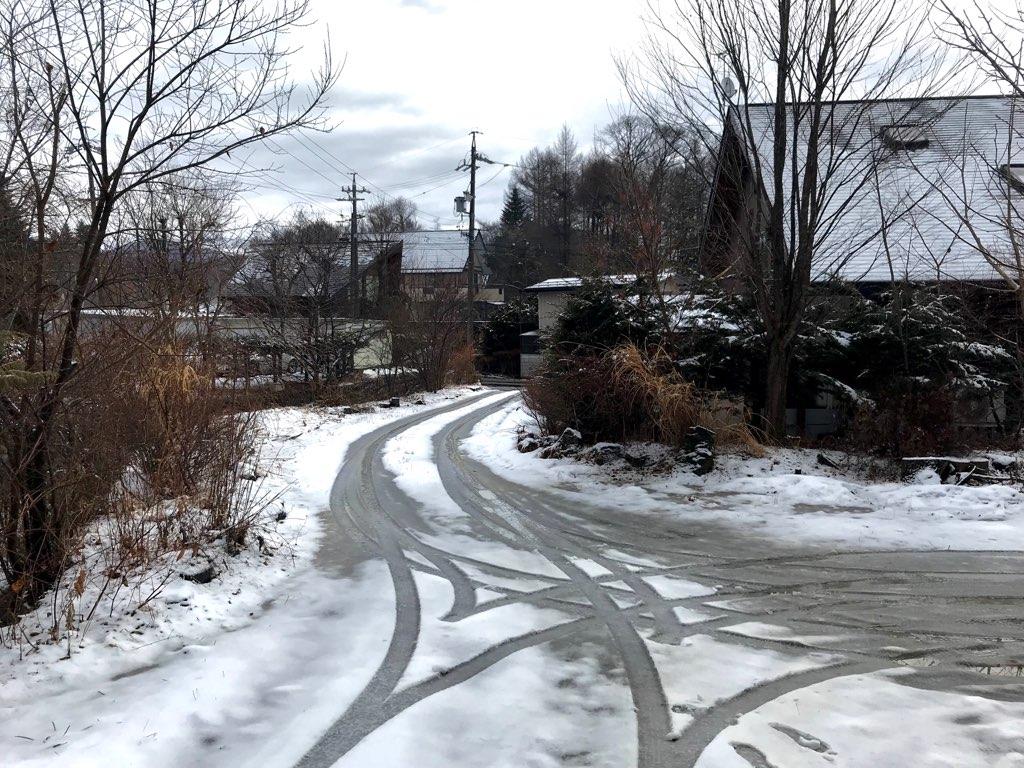 湿った雪のあとの春一番?