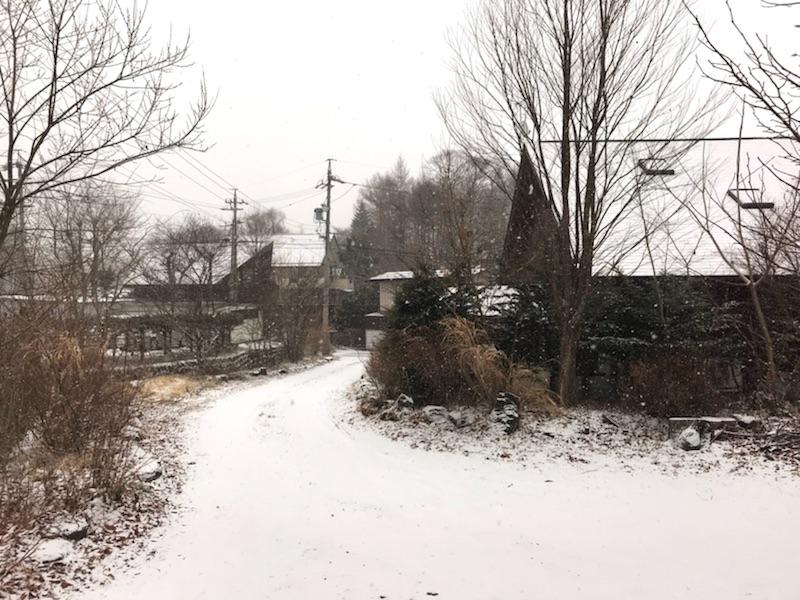 冬将軍、最後の逆襲【雪】