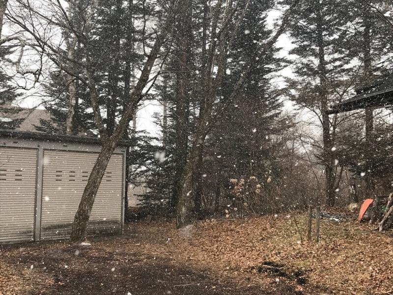 この冬の最後の風花舞う。