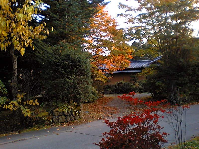 今日の軽井沢【紅葉が見頃に】