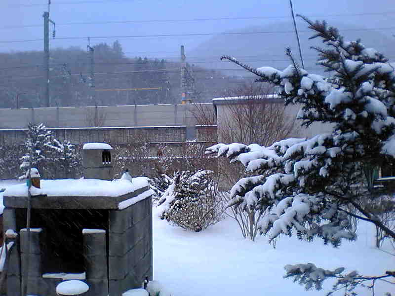 今朝の軽井沢【雪】