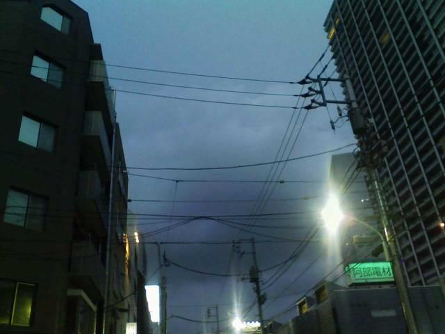 涼しい都内の夜