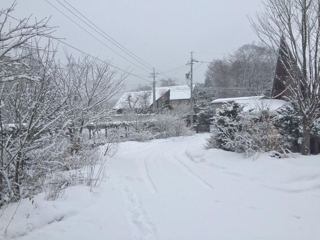 今日の軽井沢【雪のち晴れ】