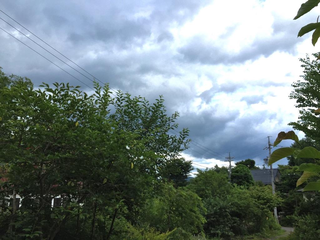 梅雨の晴れ間と蛍。