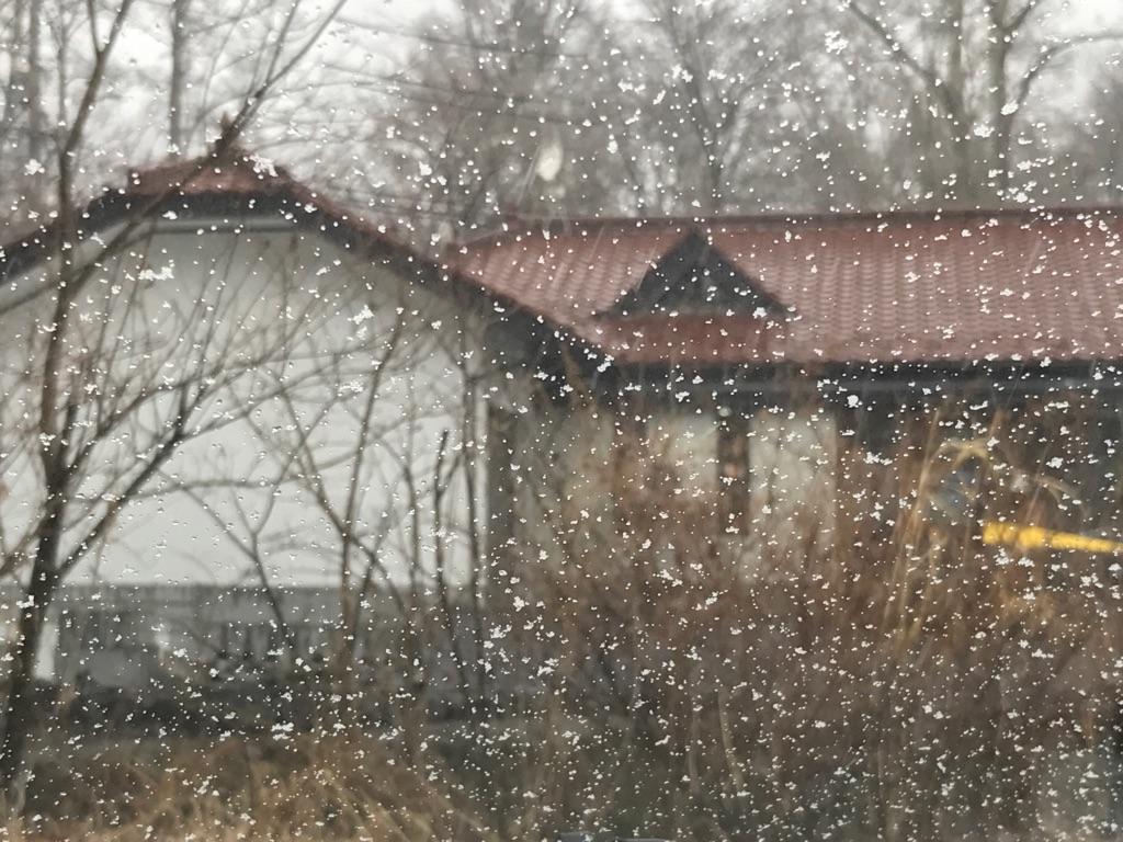 今朝の軽井沢【雨のち雪】