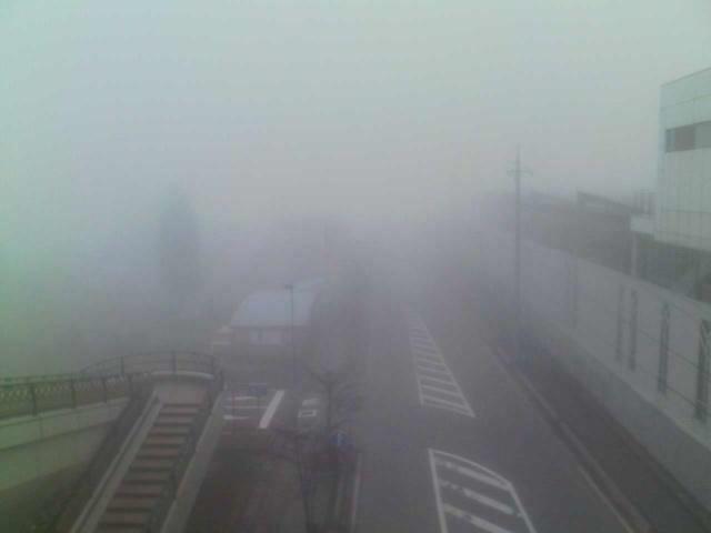 今朝の軽井沢【濃霧】